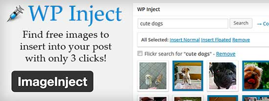WordPress Plugins for Managing Images