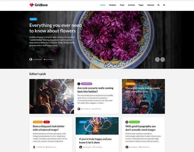 Premium WordPress Themes 2018